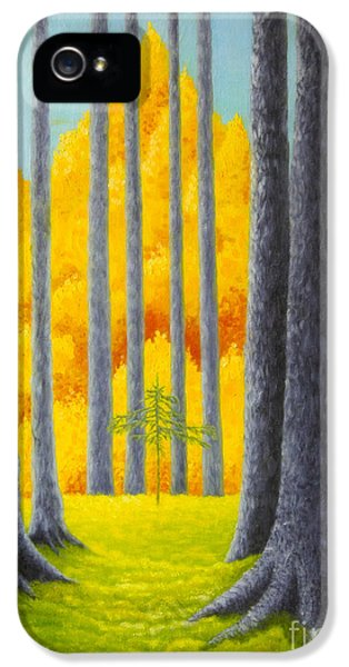 Office Decor iPhone 5 Cases - Cathedral iPhone 5 Case by Veikko Suikkanen