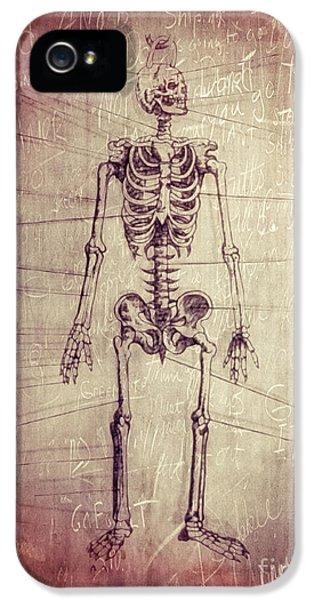 Oddities iPhone 5 Cases - Chalkboard Skeleton iPhone 5 Case by Edward Fielding