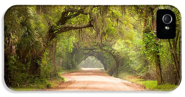 Road iPhone 5 Cases - Charleston SC Edisto Island Dirt Road - The Deep South iPhone 5 Case by Dave Allen
