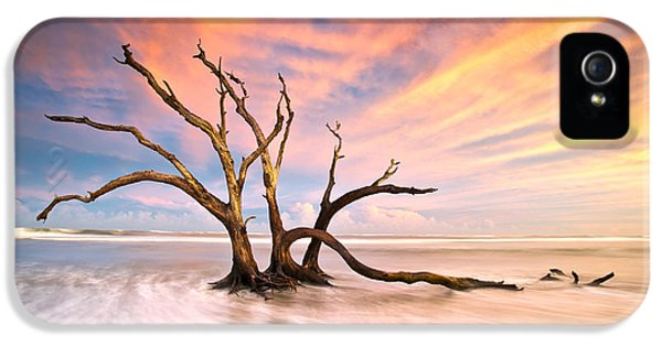 Epic iPhone 5 Cases - Charleston SC Sunset Folly Beach Trees - The Calm iPhone 5 Case by Dave Allen