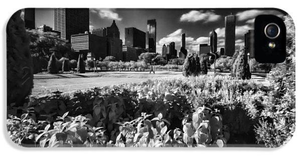 Michgan Avenue iPhone 5 Cases - Chciagos grant park in the late afternoon sun iPhone 5 Case by Sven Brogren