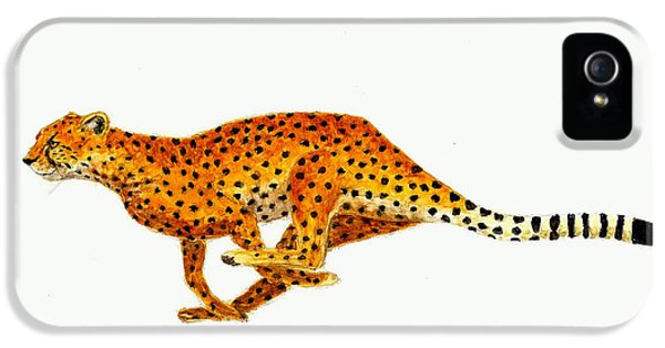 Cheetah IPhone 5 / 5s Case by Michael Vigliotti