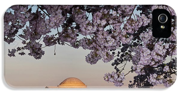 Cherry Blossom Tree With A Memorial IPhone 5 / 5s Case by Panoramic Images