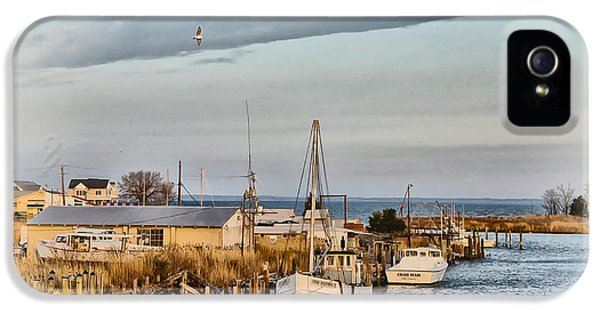 Crabbing iPhone 5 Cases - Chesapeake Fishing Boats iPhone 5 Case by Bill Cannon