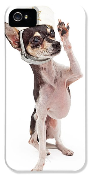 Greet iPhone 5 Cases - Chihuahua Sailor Dog Saluting iPhone 5 Case by Susan  Schmitz