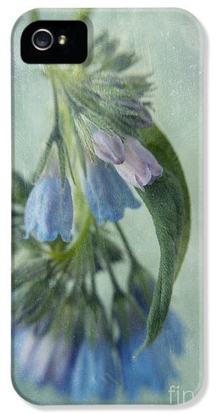 Lensbaby iPhone 5 Cases - Chiming Bells Part I iPhone 5 Case by Priska Wettstein