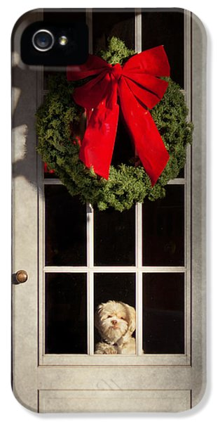 Scottie iPhone 5 Cases - Christmas - Clinton NJ - Christmas puppy iPhone 5 Case by Mike Savad