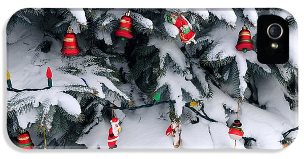 December iPhone 5 Cases - Christmas decorations in snow iPhone 5 Case by Elena Elisseeva