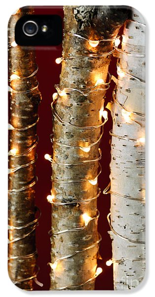 Twist iPhone 5 Cases - Christmas lights on birch branches iPhone 5 Case by Elena Elisseeva