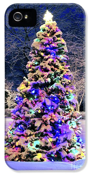 December iPhone 5 Cases - Christmas tree in snow iPhone 5 Case by Elena Elisseeva