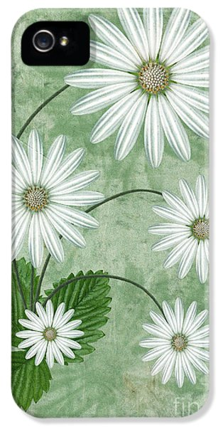Blooms iPhone 5 Cases - Cinco iPhone 5 Case by John Edwards