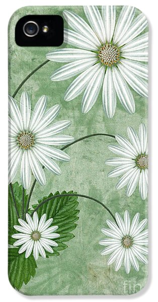 Cinco IPhone 5 / 5s Case by John Edwards