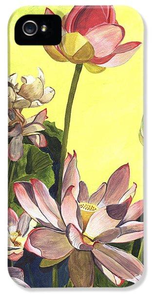 Blooms iPhone 5 Cases - Citron Lotus 1 iPhone 5 Case by Debbie DeWitt