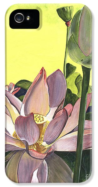 Plant iPhone 5 Cases - Citron Lotus 2 iPhone 5 Case by Debbie DeWitt