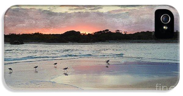 Coastal Beauty IPhone 5 / 5s Case by Betty LaRue