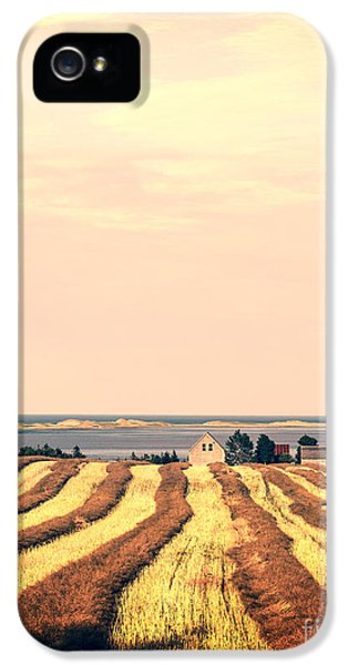Prince iPhone 5 Cases - Coastal Farm PEI iPhone 5 Case by Edward Fielding