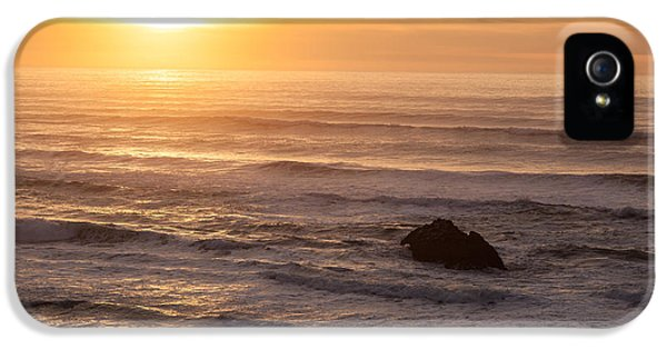 Hug iPhone 5 Cases - Coastal Rhythm iPhone 5 Case by Mike Reid