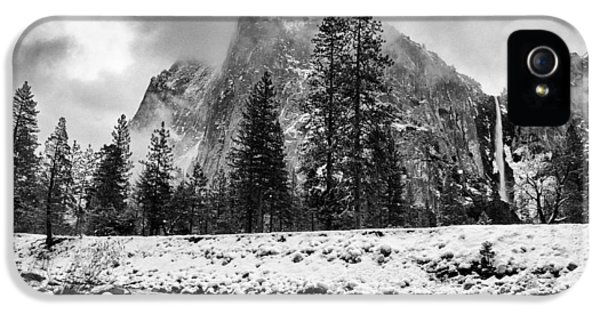 Black Snow iPhone 5 Cases - Cold Winter Morning iPhone 5 Case by Cat Connor