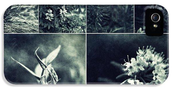 Lupin iPhone 5 Cases - Yukon Wild flower Collage iPhone 5 Case by Priska Wettstein