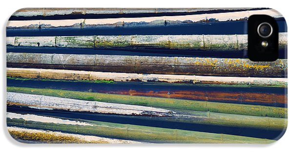 Environment Design iPhone 5 Cases - Colorful Bamboo iPhone 5 Case by Wim Lanclus