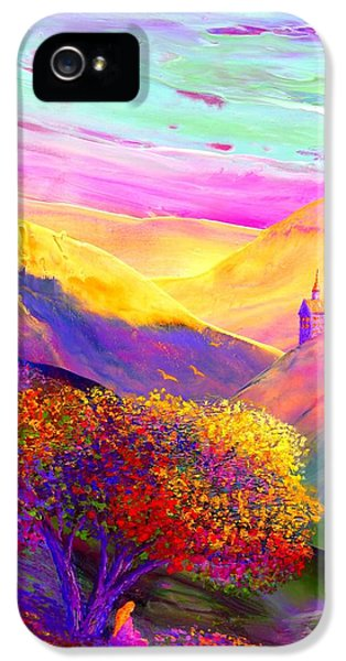 Colorful Enchantment IPhone 5 / 5s Case by Jane Small