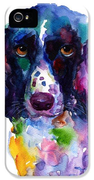 Hunting iPhone 5 Cases - Colorful English Springer Setter Spaniel dog portrait art iPhone 5 Case by Svetlana Novikova