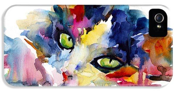 Colorful Tubby Cat Painting IPhone 5 / 5s Case by Svetlana Novikova
