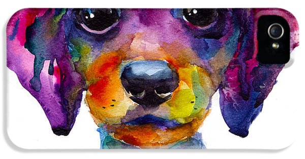 Order iPhone 5 Cases - Colorful whimsical Daschund Dog puppy art iPhone 5 Case by Svetlana Novikova