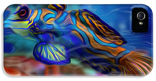 Colors Below 2 IPhone 5 / 5s Case by Jack Zulli