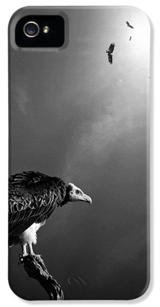 Wait iPhone 5 Cases - Conceptual - Vultures awaiting iPhone 5 Case by Johan Swanepoel