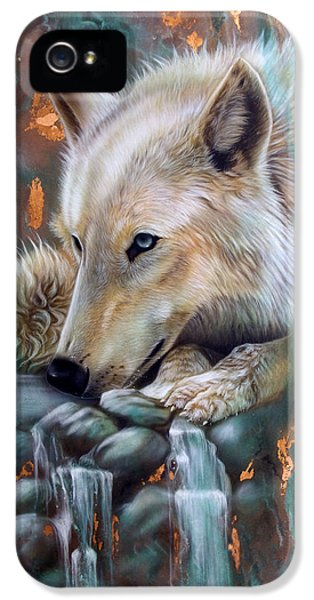 Copper iPhone 5 Cases - Copper Arctic Wolf iPhone 5 Case by Sandi Baker