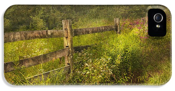 Country iPhone 5 Cases - Country - Fence - County border  iPhone 5 Case by Mike Savad
