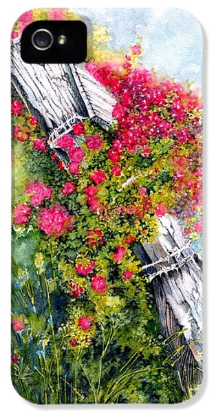 Rosa Acicularis iPhone 5 Cases - Country Rose iPhone 5 Case by Janine Riley