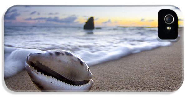 Water iPhone 5 Cases - Cowrie Sunrise iPhone 5 Case by Sean Davey