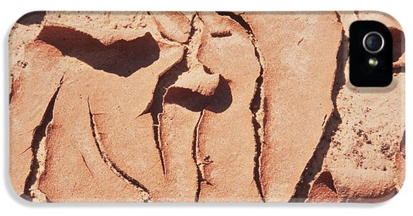 Loam iPhone 5 Cases - Cracked Mud iPhone 5 Case by Stephan Pietzko