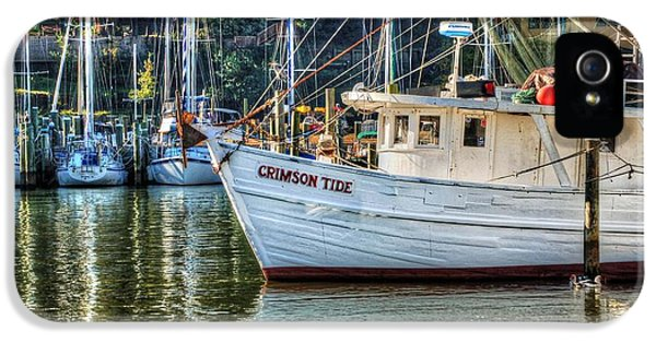 Alabama iPhone 5 Cases - Crimson Tide in the Sunshine iPhone 5 Case by Michael Thomas