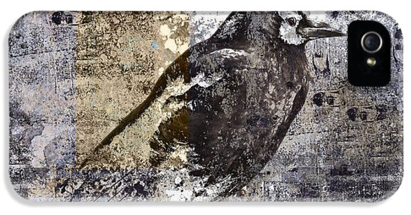 Crow Number 84 IPhone 5 / 5s Case by Carol Leigh