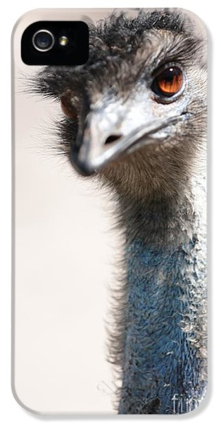 Curious Emu IPhone 5 / 5s Case by Carol Groenen
