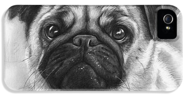 Pencil Drawing iPhone 5 Cases - Cute Pug iPhone 5 Case by Olga Shvartsur