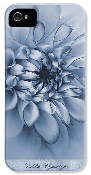 Poisonous iPhone 5 Cases - Cyanotype Dahlia  iPhone 5 Case by John Edwards