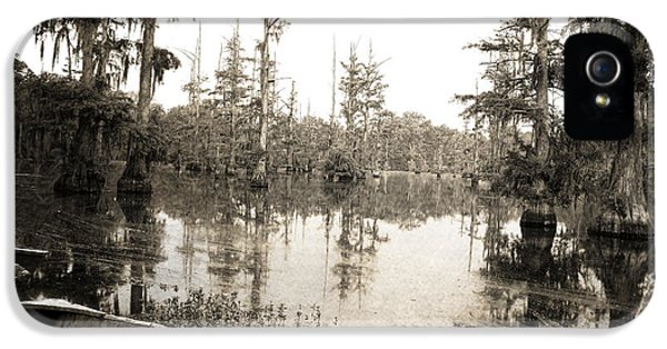 Bayou iPhone 5 Cases - Cypress Swamp iPhone 5 Case by Scott Pellegrin
