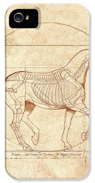 da Vinci Horse in Piaffe IPhone 5 / 5s Case by Catherine Twomey