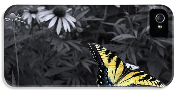 Dance In The Garden IPhone 5 / 5s Case by Don Spenner