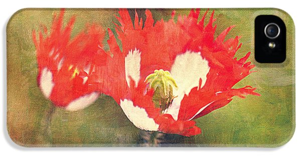 Danish iPhone 5 Cases - Danish Flag Poppies iPhone 5 Case by Maria Angelica Maira