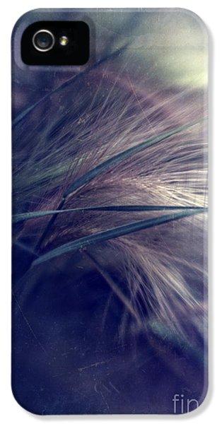 Lensbaby iPhone 5 Cases - darkly series I iPhone 5 Case by Priska Wettstein