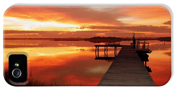 Dawn Of New Year IPhone 5 / 5s Case by Karen Wiles