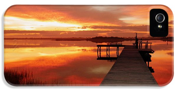 Reflective iPhone 5 Cases - DAWN of NEW YEAR iPhone 5 Case by Karen Wiles