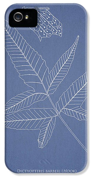 Fern iPhone 5 Cases - Dictyopteris barberi iPhone 5 Case by Aged Pixel