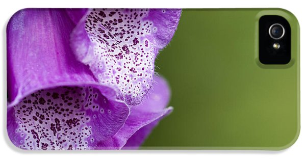 Tubular iPhone 5 Cases - Digitalis Abstract iPhone 5 Case by Anne Gilbert