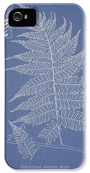 Fern iPhone 5 Cases - Diplazium jerdoni iPhone 5 Case by Aged Pixel